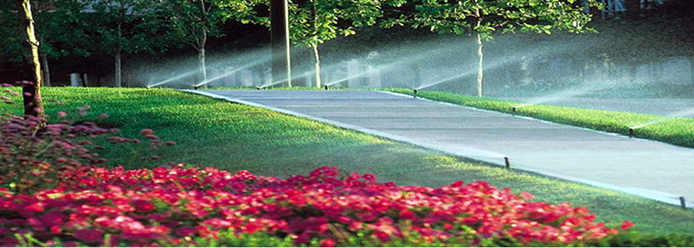 water-management-landscaping-services-simply-petals-garden